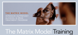 the matrix model training